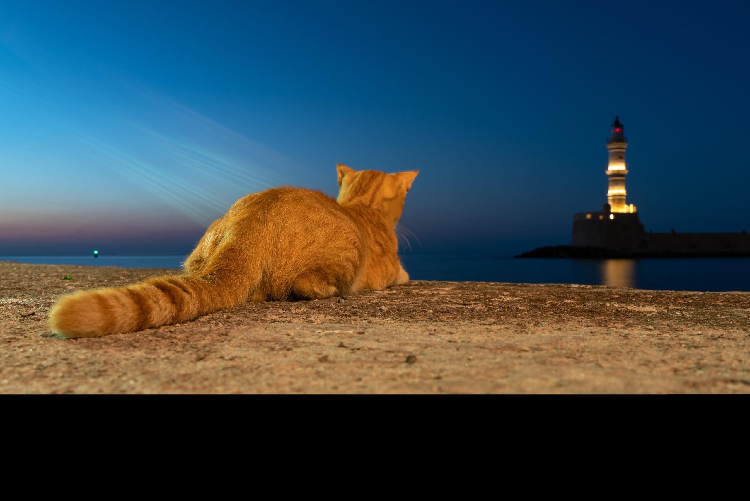 Das Beste aus Kreta in 23 Minuten (UltraHD)